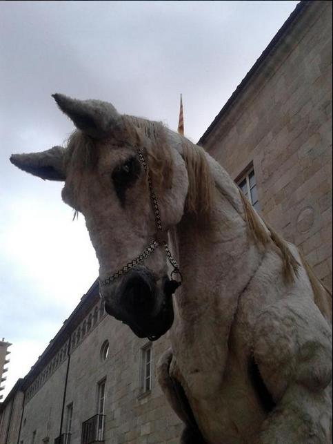 La carrossa del cavall per @promisecatala